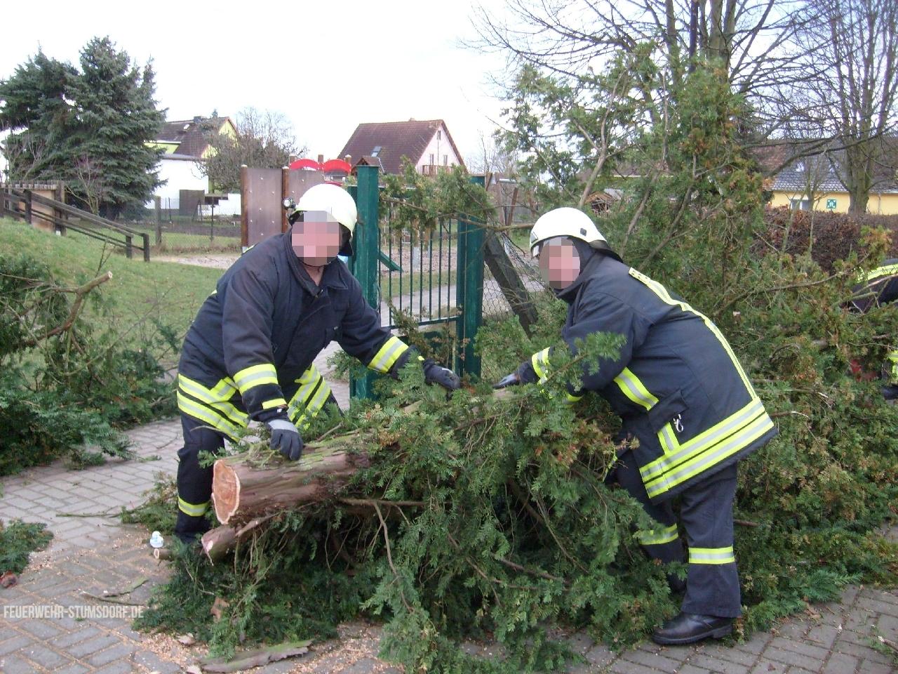 technische Hilfeleistung Baum